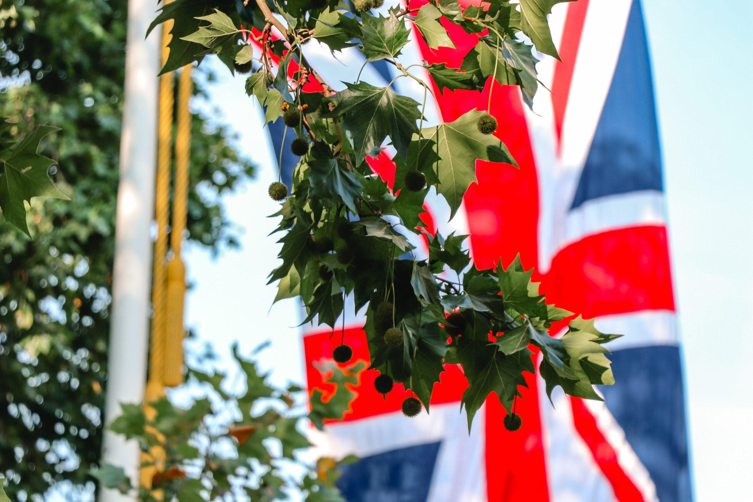 Le Royaume-Uni est l'un des plus importants marchés pour la musique dans le monde. Quelles conséquences suite au Brexit ? Le CNM met à disposition des fiches pratiques pour développer son projet musical au Royaume-Uni.
